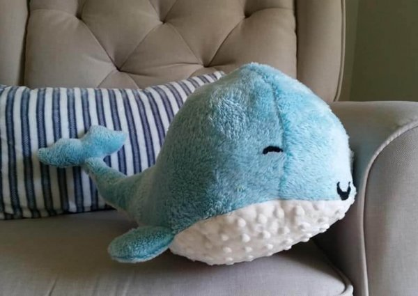 Love and Fluff whale